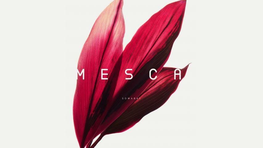 Mesca Logo